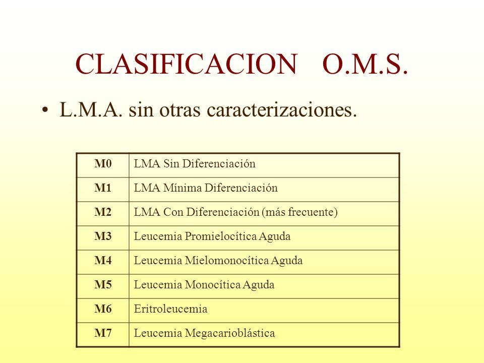 CLASIFICACION O.M.S. L.M.A. sin otras caracterizaciones. M0