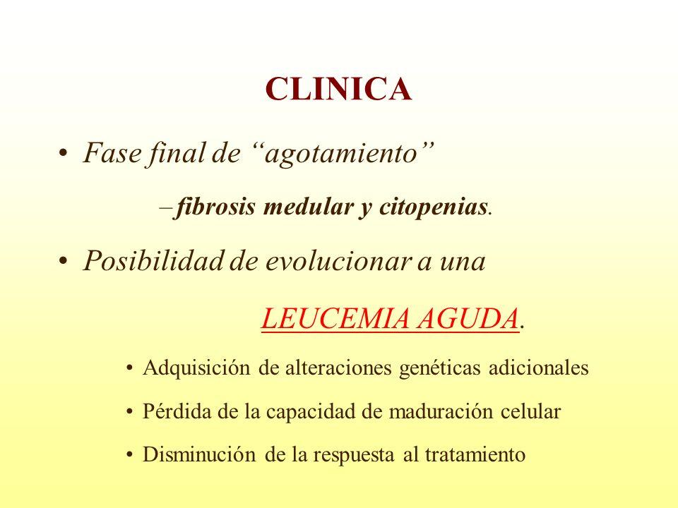 CLINICA Fase final de agotamiento Posibilidad de evolucionar a una