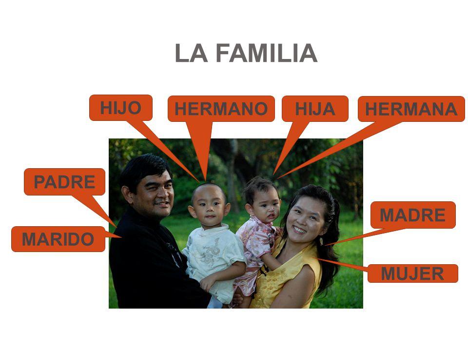 LA FAMILIA HIJO HERMANO HIJA HERMANA PADRE MADRE MARIDO MUJER