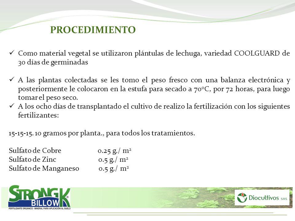 PROCEDIMIENTO Como material vegetal se utilizaron plántulas de lechuga, variedad COOLGUARD de 30 días de germinadas.