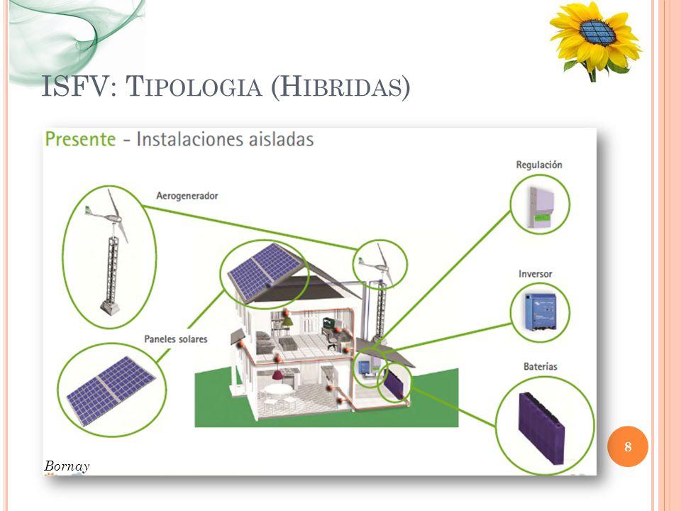 ISFV: Tipologia (Hibridas)