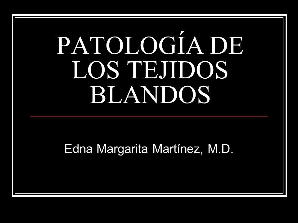 PATOLOGÍA DE LOS TEJIDOS BLANDOS