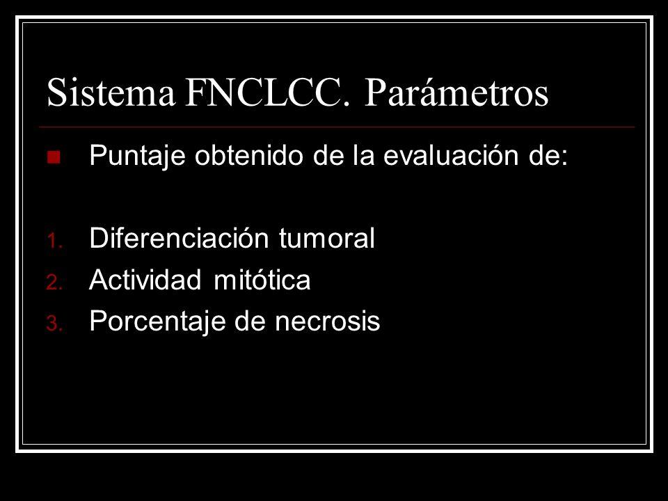 Sistema FNCLCC. Parámetros