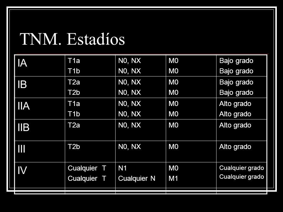 TNM. Estadíos IA IB IIA IIB III IV T1a T1b N0, NX M0 Bajo grado T2a