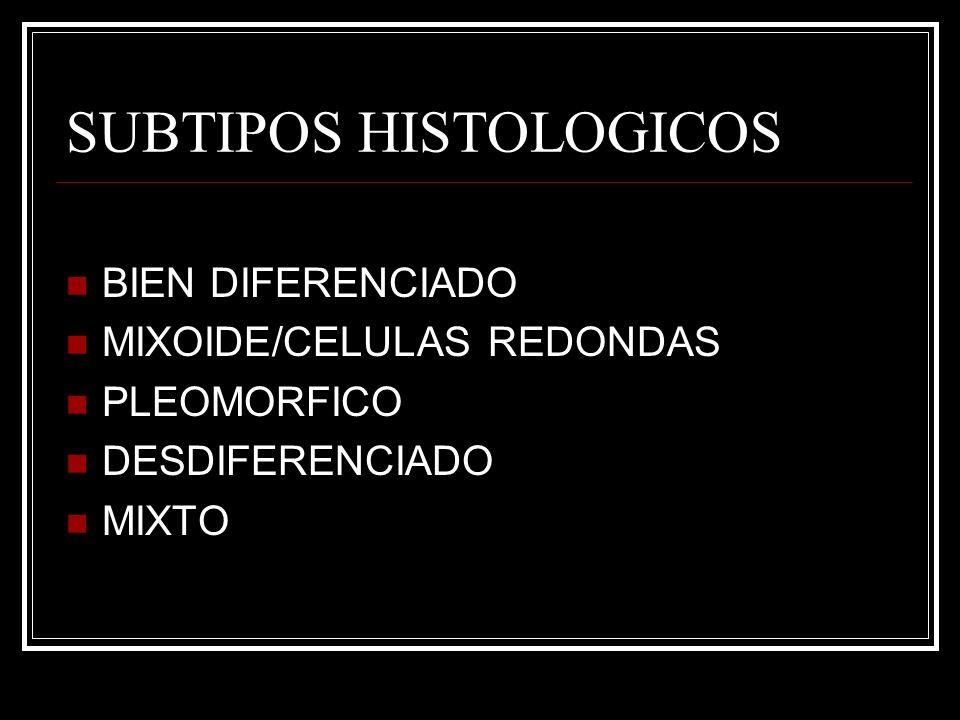 SUBTIPOS HISTOLOGICOS