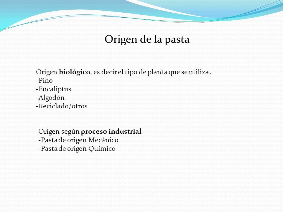 Origen de la pasta Origen biológico, es decir el tipo de planta que se utiliza . -Pino. -Eucaliptus.