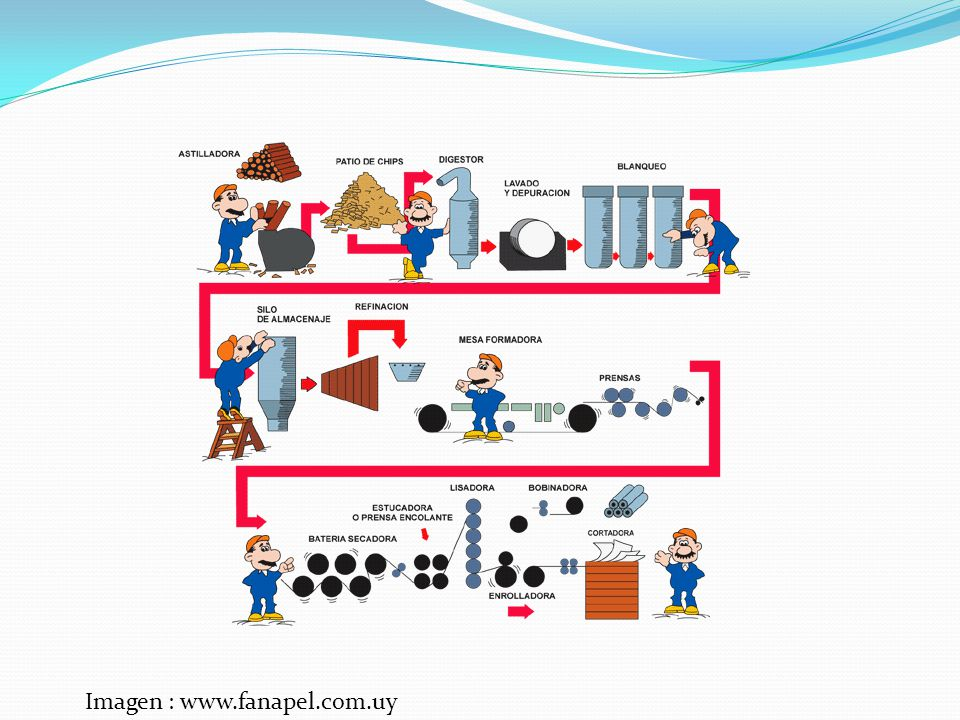 Imagen : www.fanapel.com.uy