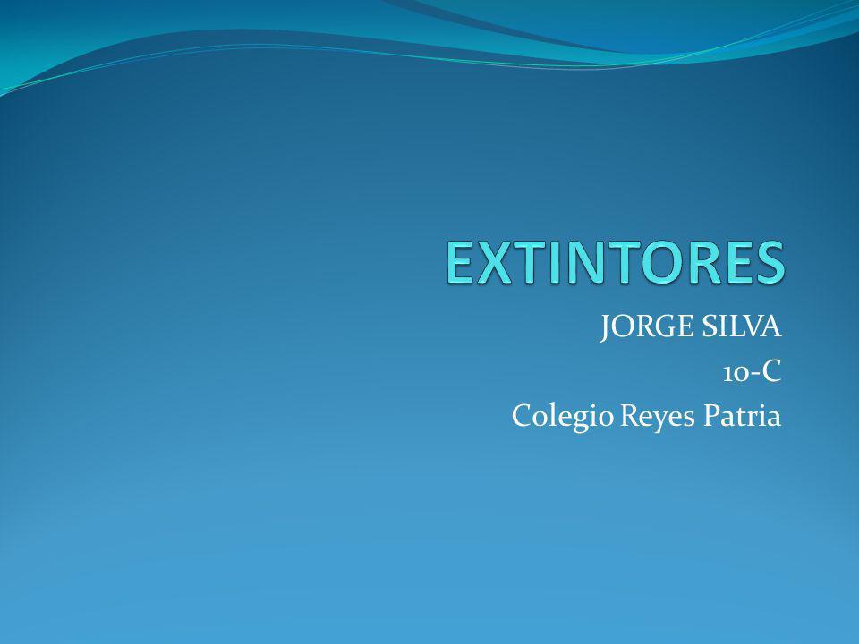 JORGE SILVA 10-C Colegio Reyes Patria