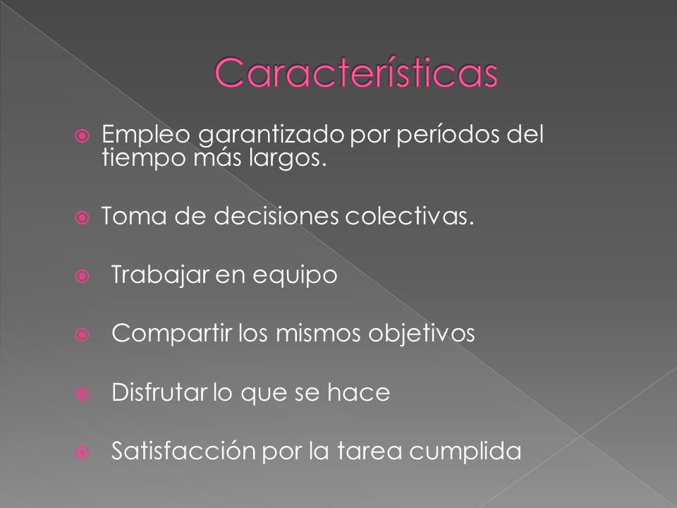 Características Empleo garantizado por períodos del tiempo más largos.
