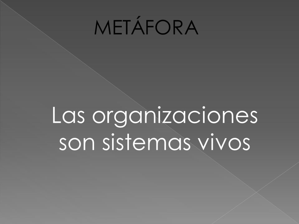 Las organizaciones son sistemas vivos