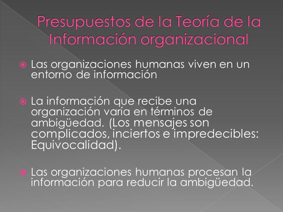 Presupuestos de la Teoría de la Información organizacional