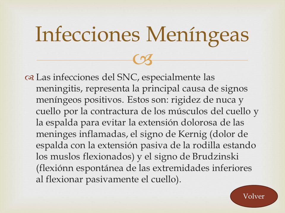 Infecciones Meníngeas