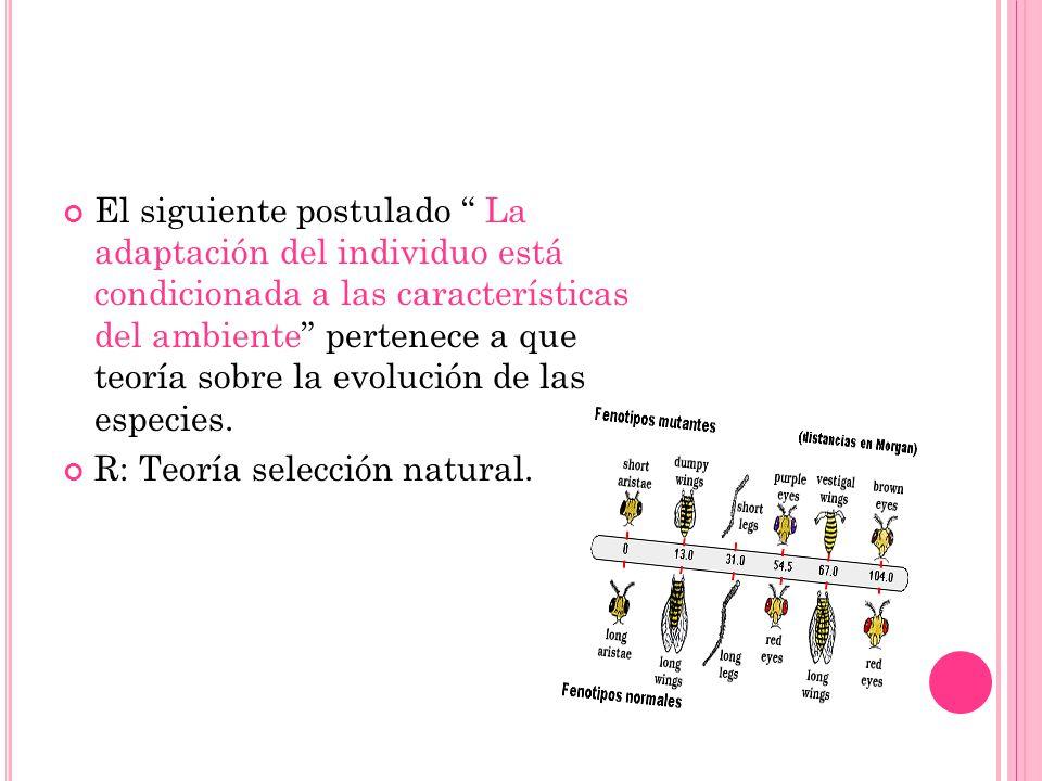El siguiente postulado La adaptación del individuo está condicionada a las características del ambiente pertenece a que teoría sobre la evolución de las especies.