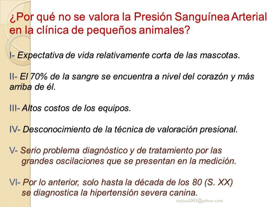 ¿Por qué no se valora la Presión Sanguínea Arterial en la clínica de pequeños animales I- Expectativa de vida relativamente corta de las mascotas. II- El 70% de la sangre se encuentra a nivel del corazón y más arriba de él. III- Altos costos de los equipos. IV- Desconocimiento de la técnica de valoración presional. V- Serio problema diagnóstico y de tratamiento por las grandes oscilaciones que se presentan en la medición. Vl- Por lo anterior, solo hasta la década de los 80 (S. XX) se diagnostica la hipertensión severa canina.