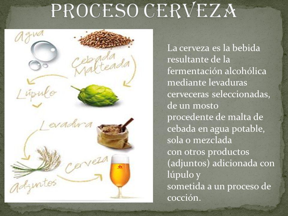 PROCESO CERVEZA La cerveza es la bebida resultante de la fermentación alcohólica. mediante levaduras cerveceras seleccionadas, de un mosto.
