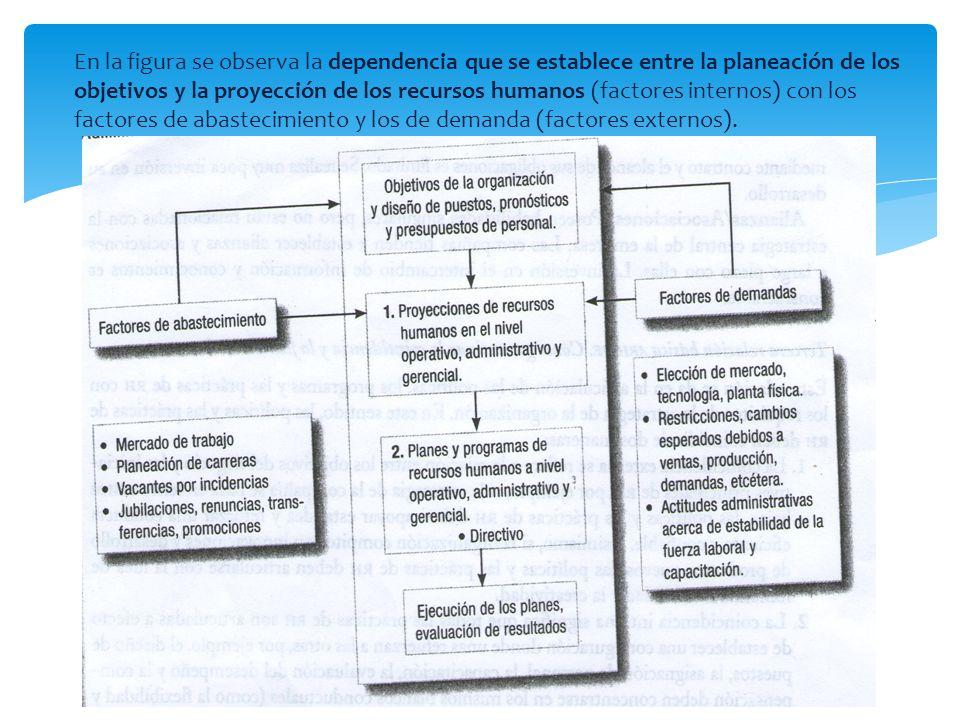 En la figura se observa la dependencia que se establece entre la planeación de los objetivos y la proyección de los recursos humanos (factores internos) con los factores de abastecimiento y los de demanda (factores externos).