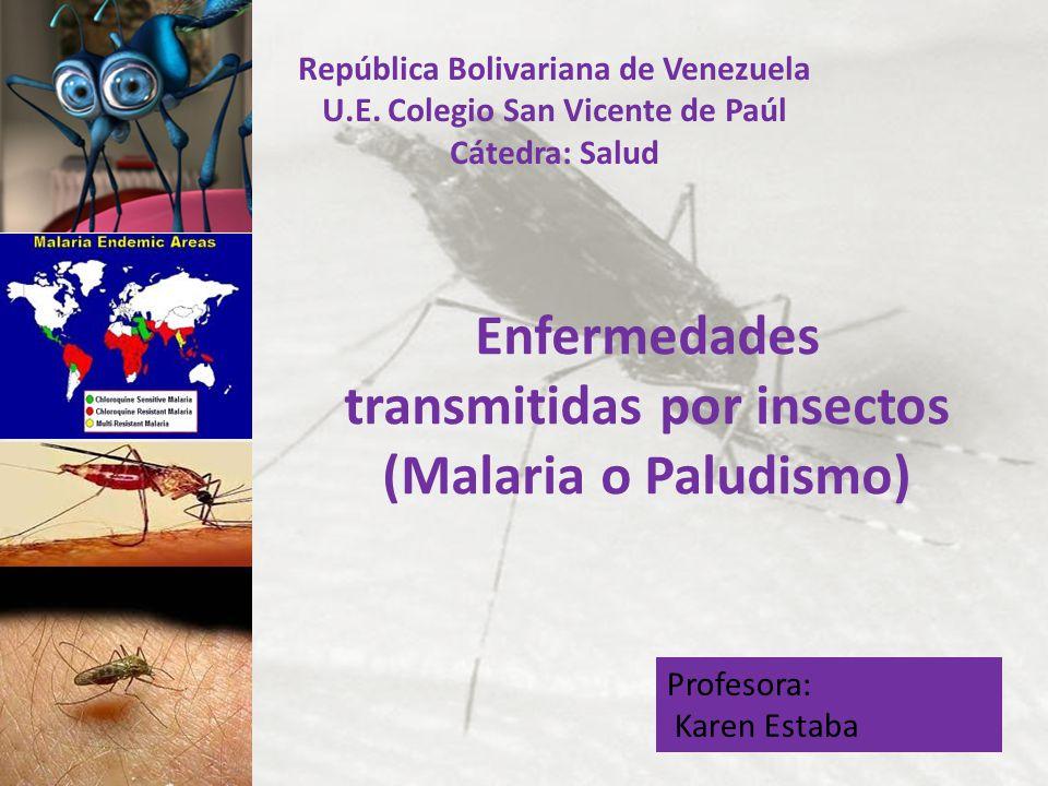 Enfermedades transmitidas por insectos (Malaria o Paludismo)