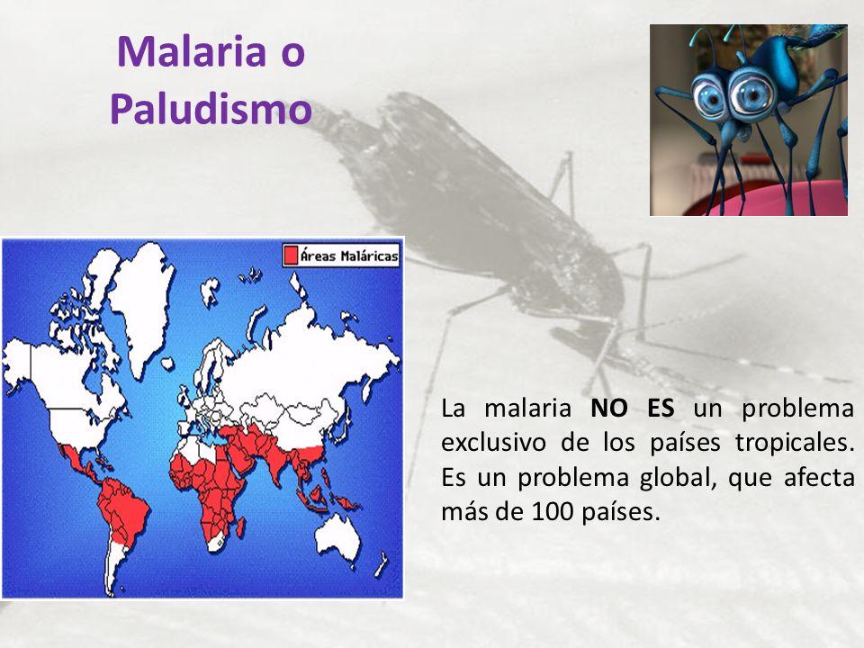 Malaria o Paludismo La malaria NO ES un problema exclusivo de los países tropicales.