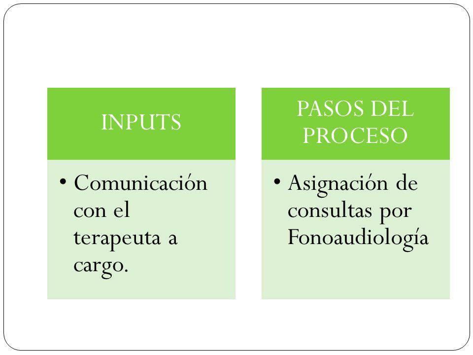 INPUTS Comunicación con el terapeuta a cargo. PASOS DEL PROCESO.