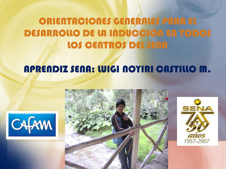 ORIENTACIONES GENERALES PARA EL DESARROLLO DE LA INDUCCIÓN EN TODOS LOS CENTROS DEL SENA Aprendiz SENA: Luigi Noyiri Castillo M.