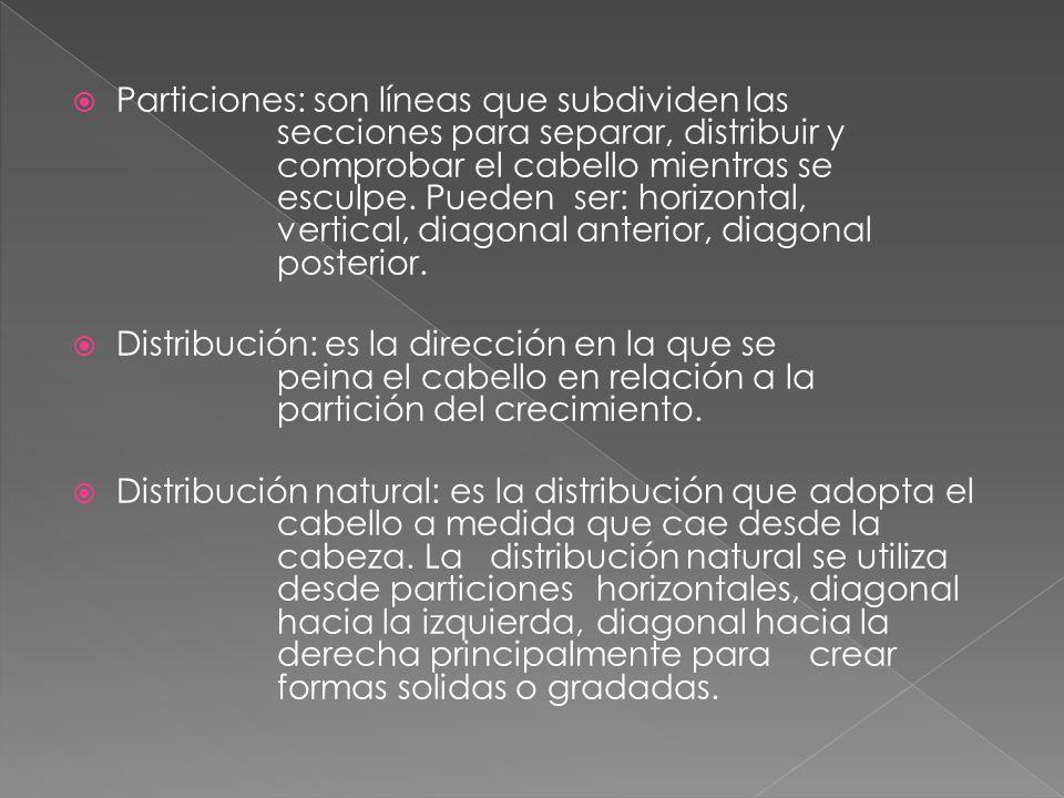 Particiones: son líneas que subdividen las