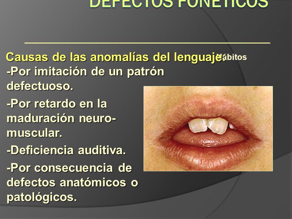 Defectos Fonéticos Causas de las anomalías del lenguaje: