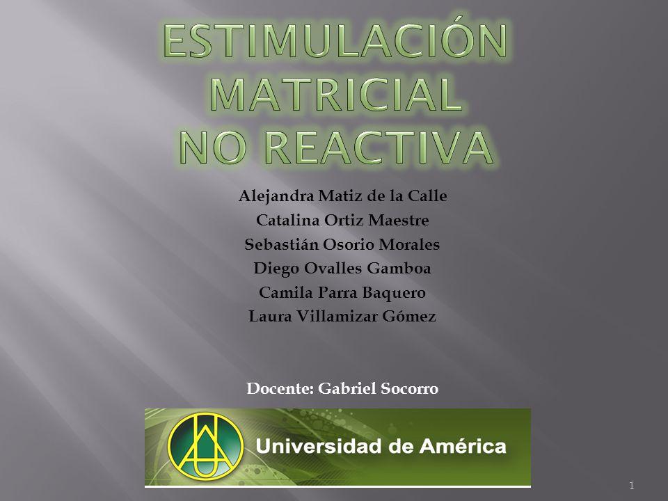 Estimulación Matricial No Reactiva