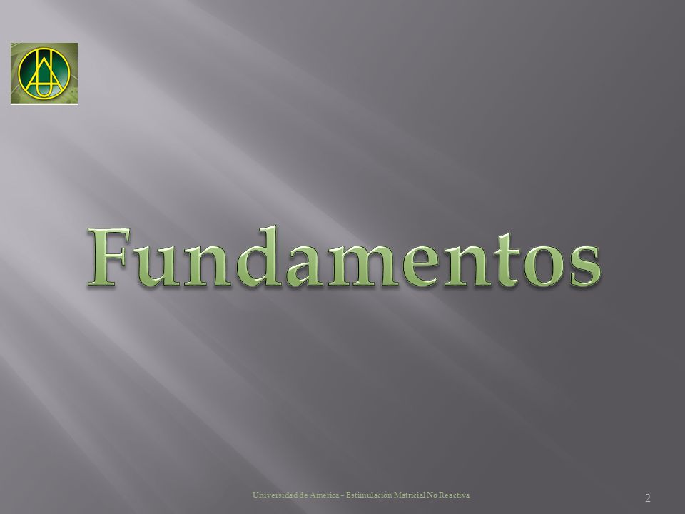 Fundamentos Universidad de America – Estimulación Matricial No Reactiva