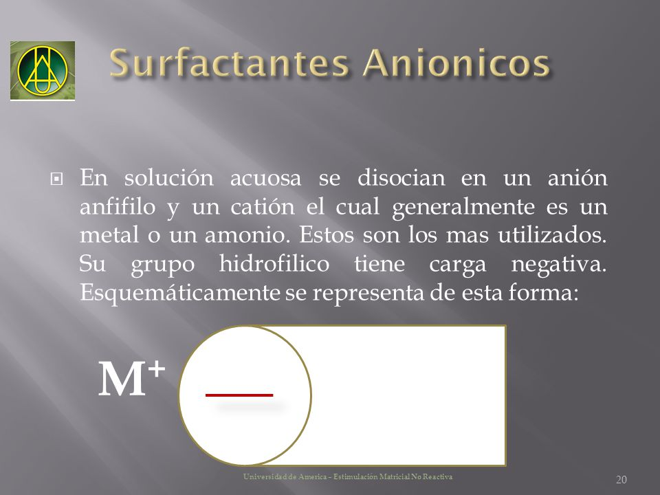 Surfactantes Anionicos
