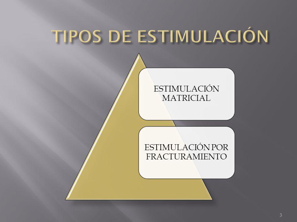 TIPOS DE ESTIMULACIÓN ESTIMULACIÓN MATRICIAL