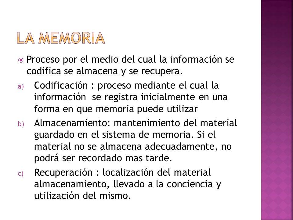 La memoria Proceso por el medio del cual la información se codifica se almacena y se recupera.