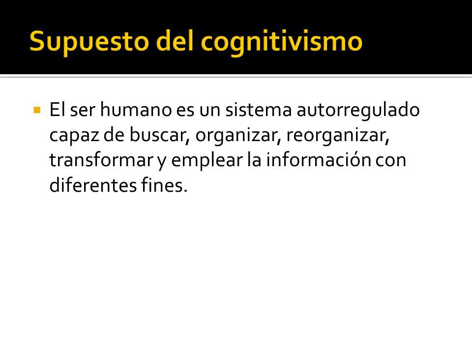 Supuesto del cognitivismo