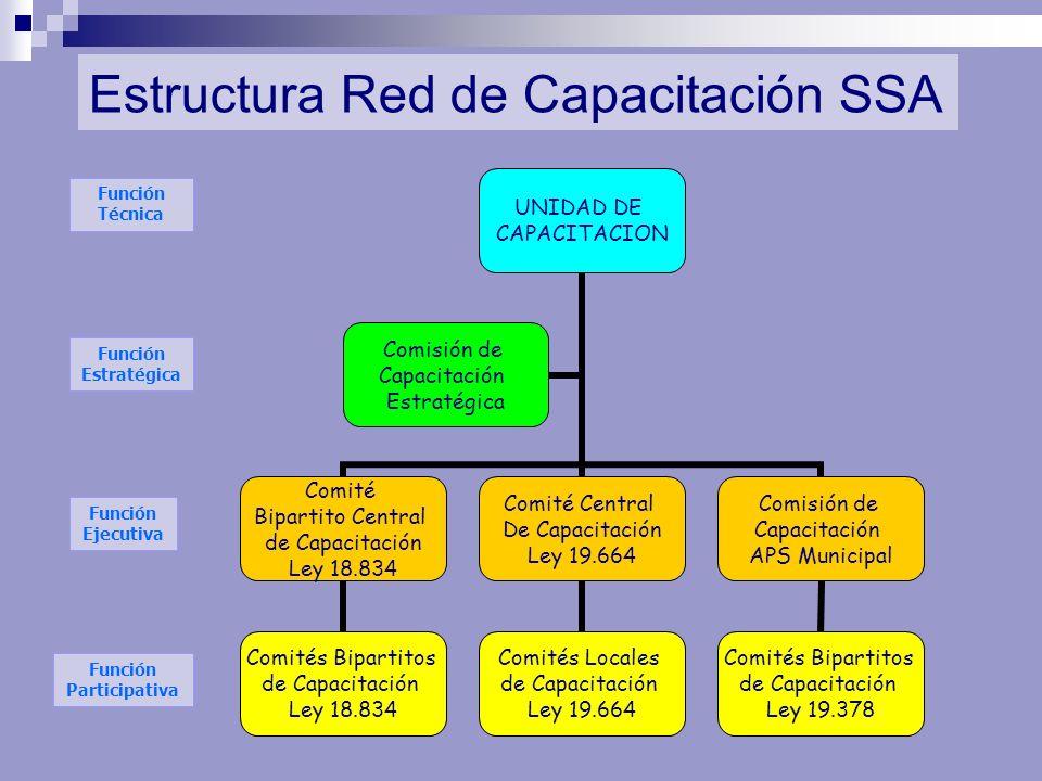 Estructura Red de Capacitación SSA