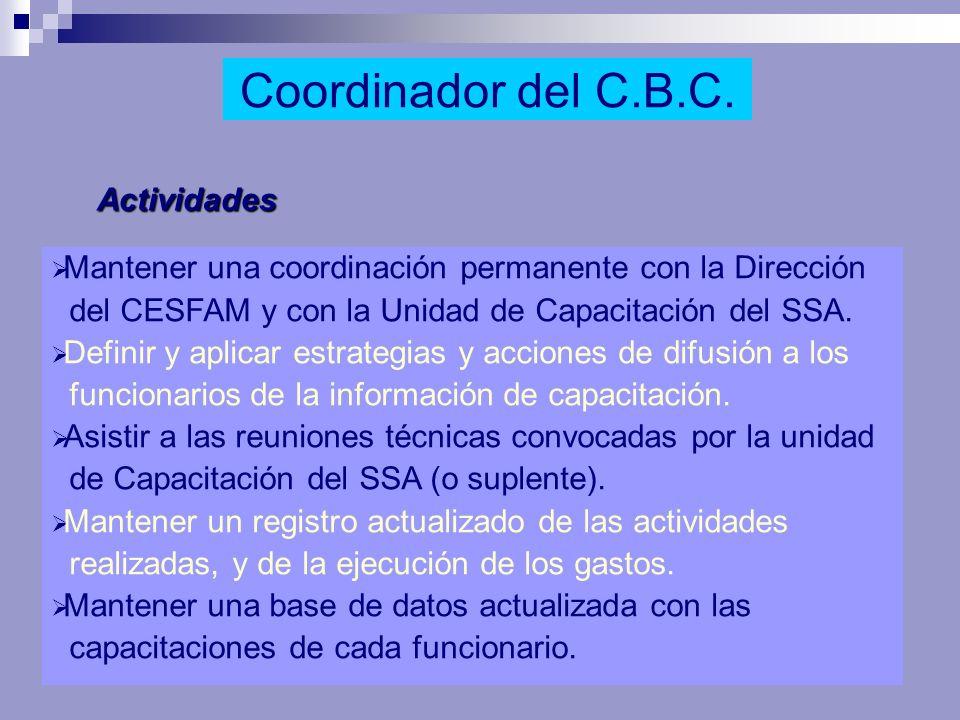 Coordinador del C.B.C. Actividades