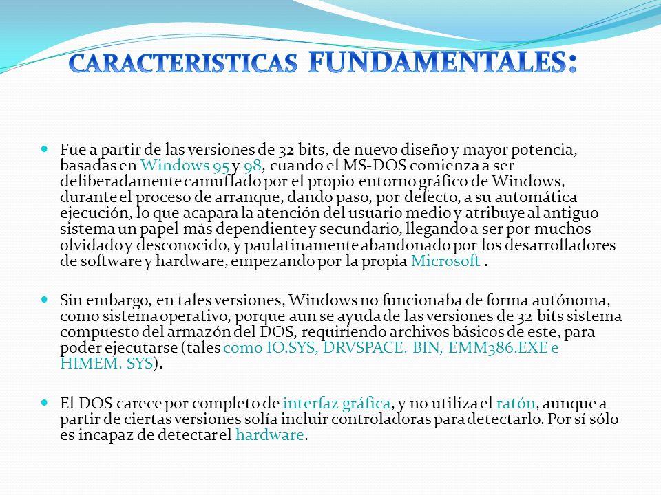 CARACTERISTICAS FUNDAMENTALES: