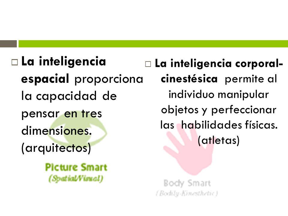 La inteligencia espacial proporciona la capacidad de pensar en tres dimensiones. (arquitectos)