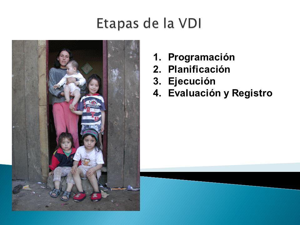 Etapas de la VDI Programación Planificación Ejecución