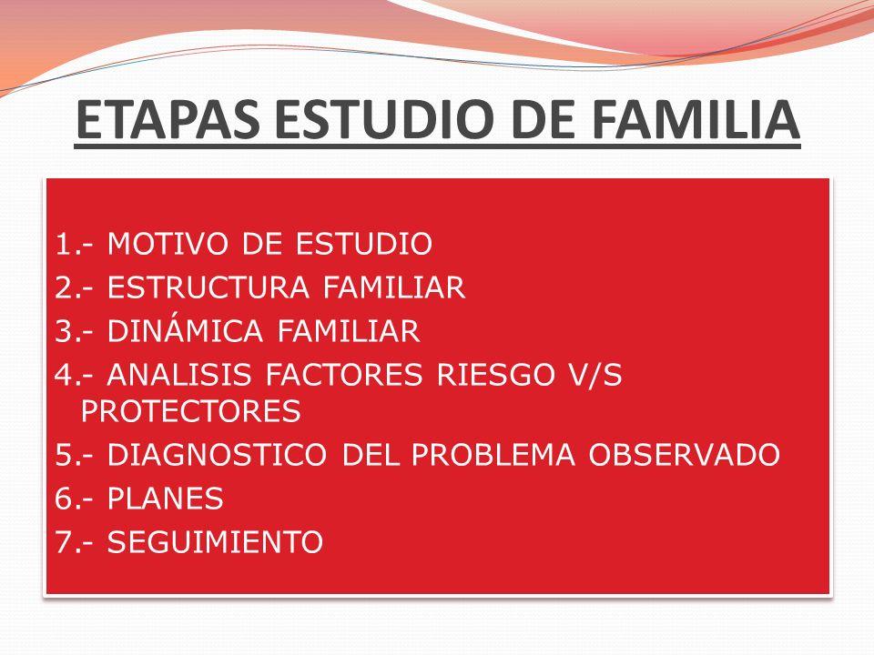 ETAPAS ESTUDIO DE FAMILIA