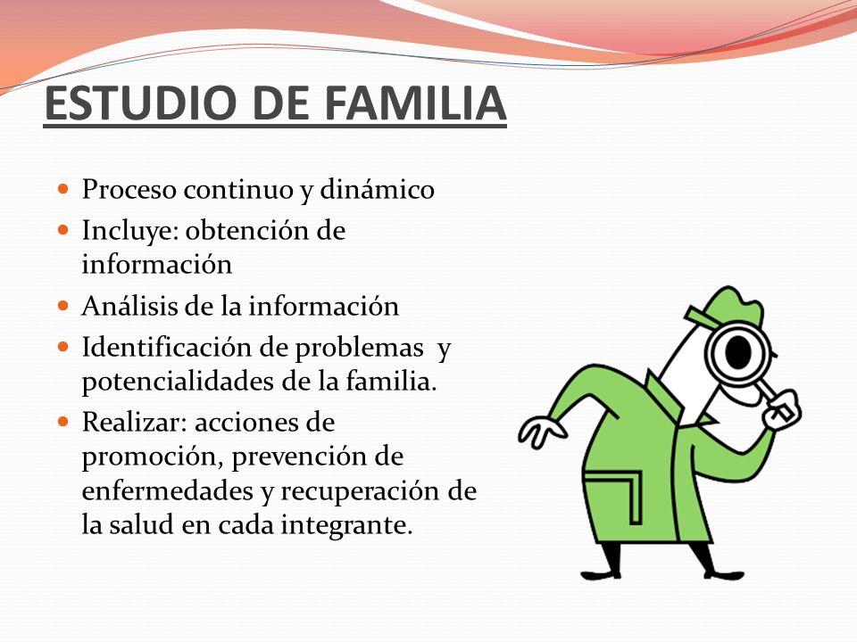 ESTUDIO DE FAMILIA Proceso continuo y dinámico