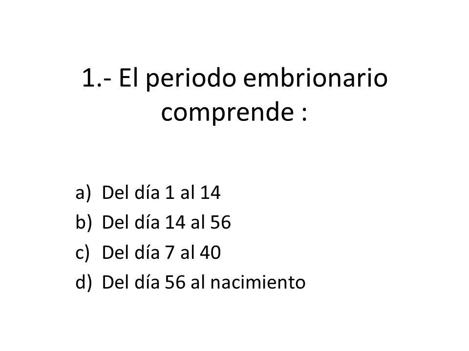 1.- El periodo embrionario comprende :