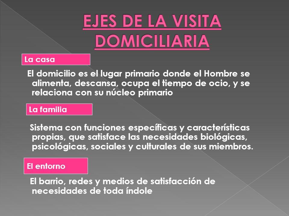 EJES DE LA VISITA DOMICILIARIA
