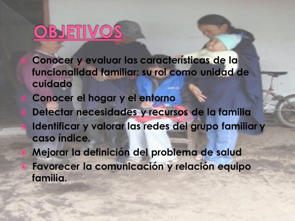 OBJETIVOS Conocer y evaluar las características de la funcionalidad familiar: su rol como unidad de cuidado.