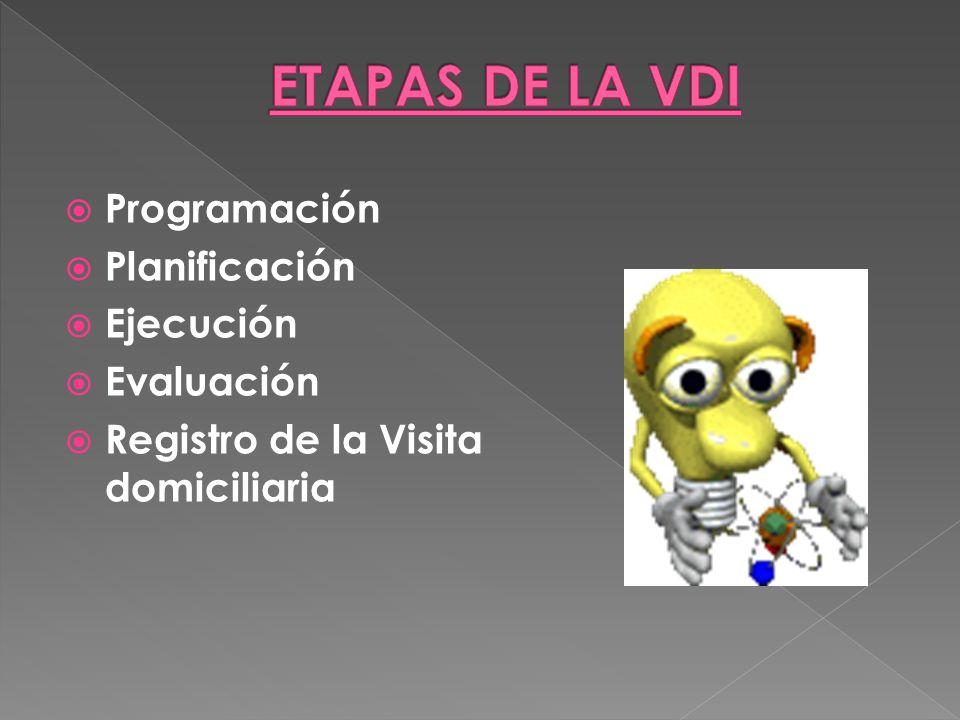 ETAPAS DE LA VDI Programación Planificación Ejecución Evaluación