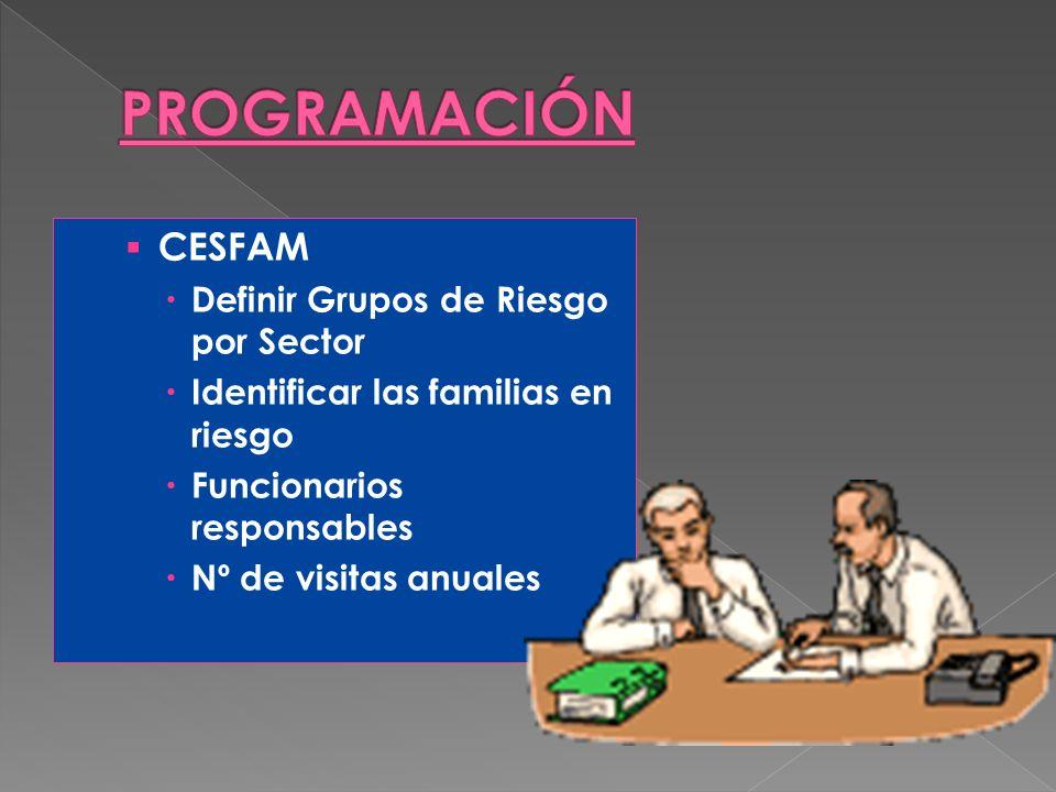 PROGRAMACIÓN CESFAM Definir Grupos de Riesgo por Sector