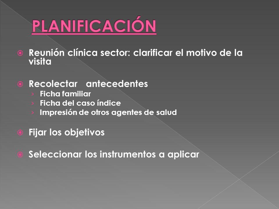 PLANIFICACIÓN Reunión clínica sector: clarificar el motivo de la visita. Recolectar antecedentes.
