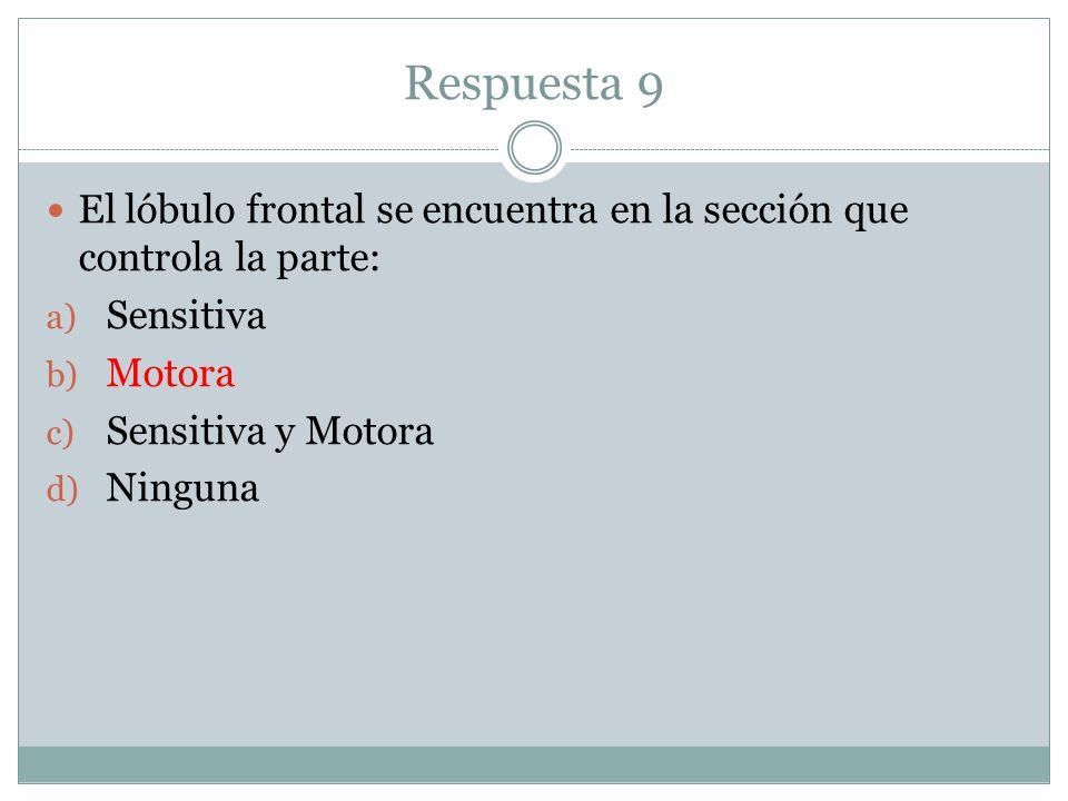 Respuesta 9 El lóbulo frontal se encuentra en la sección que controla la parte: Sensitiva. Motora.