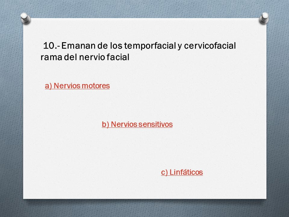 10.- Emanan de los temporfacial y cervicofacial rama del nervio facial