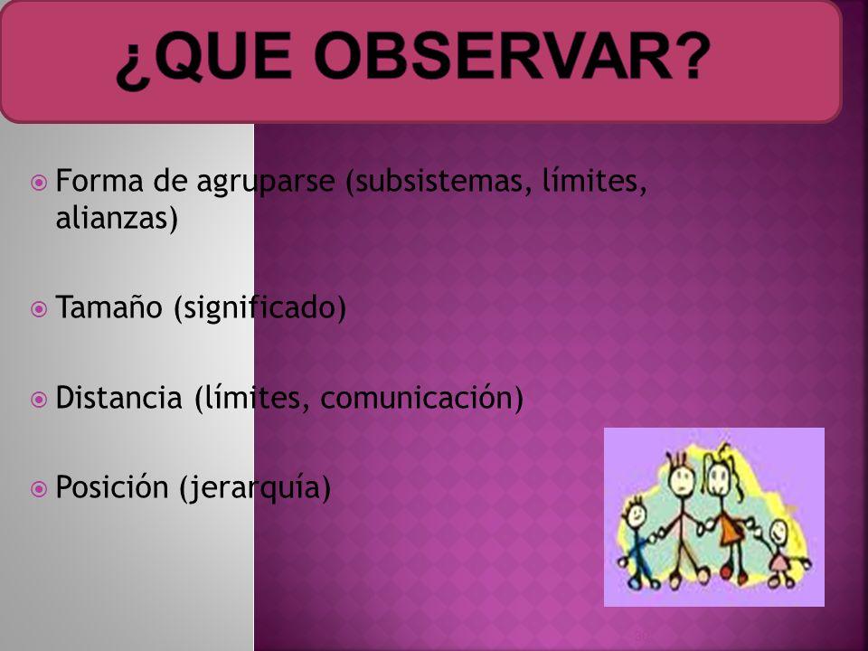¿QUE OBSERVAR Forma de agruparse (subsistemas, límites, alianzas)