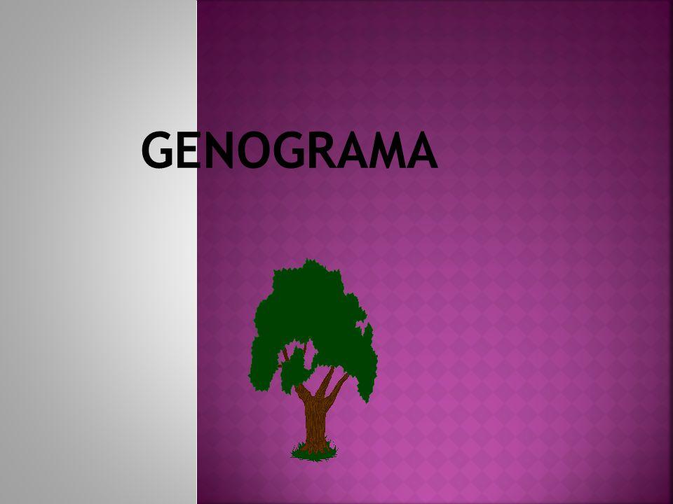 GENOGRAMA 5