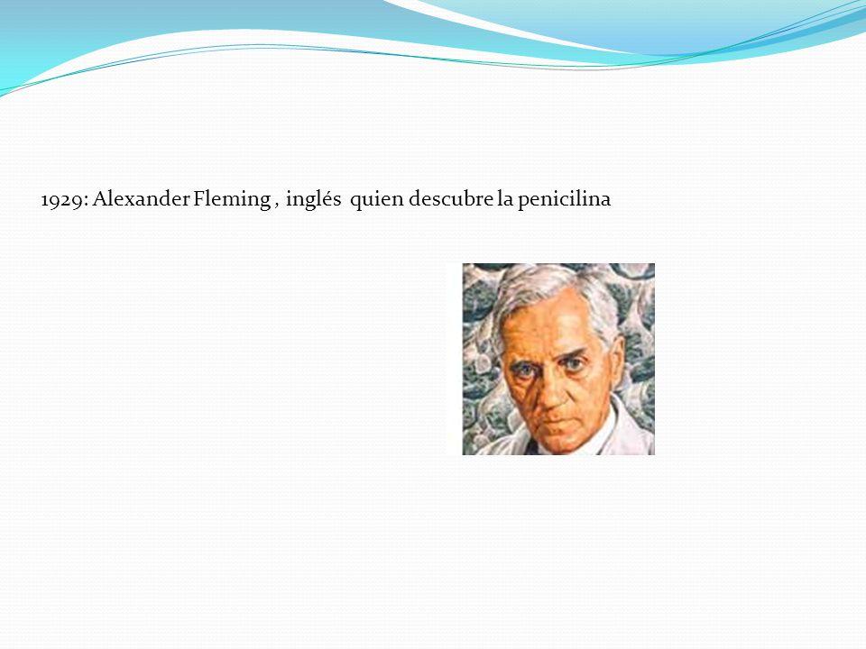 1929: Alexander Fleming , inglés quien descubre la penicilina